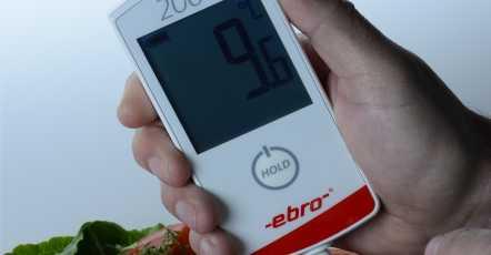 Insteekthermometer voor de horeca uit het topsegment